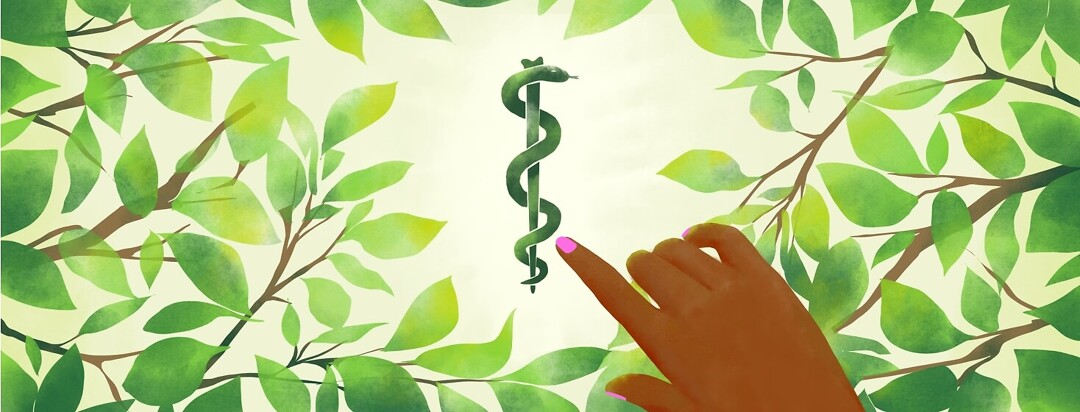 A hand pulls back leaves that surround a watercolor-painted Rod of Asclepius.