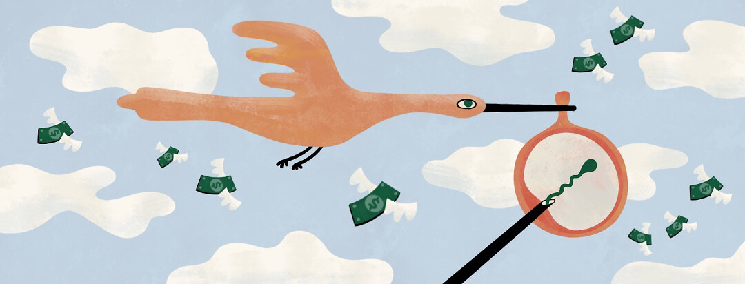 Stork is flying through the clouds carrying an in vitro fertilization procedure in its beak where there would usually be a baby. Money is flying alongside the bird.